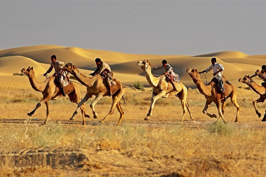 Desert Festival in Jaisalmer