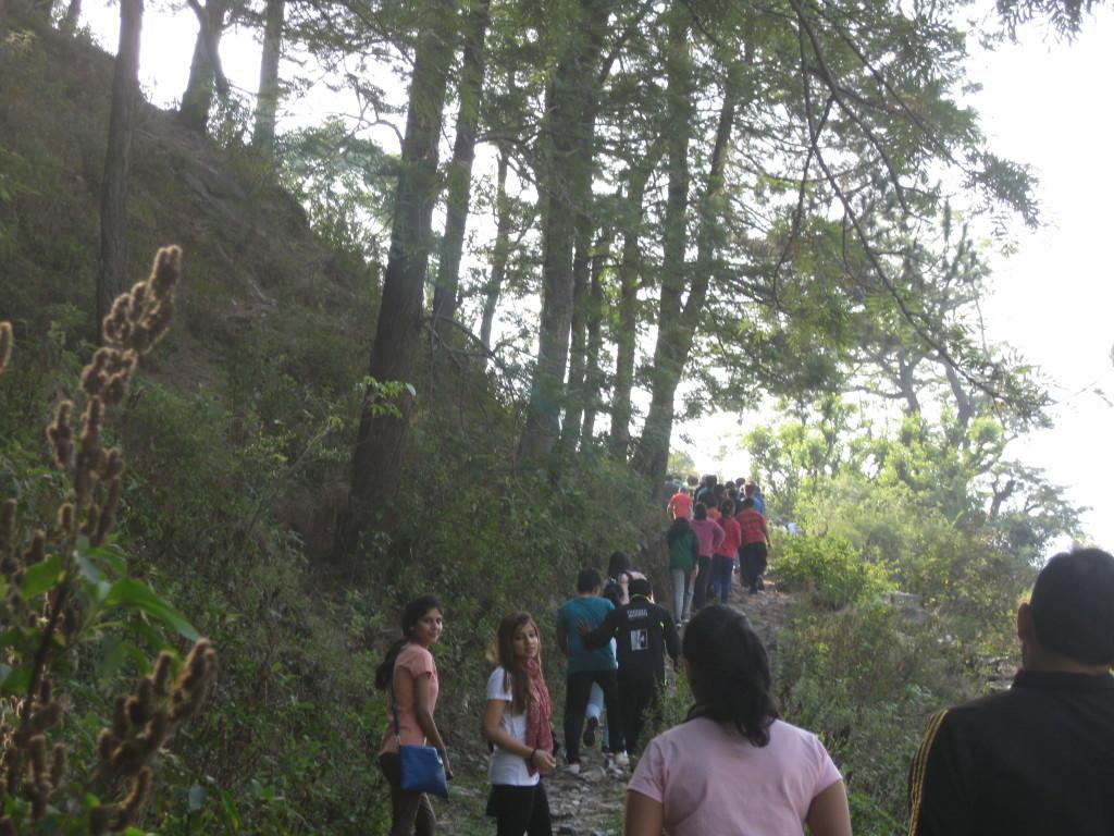 Trekking in Uttarkashi