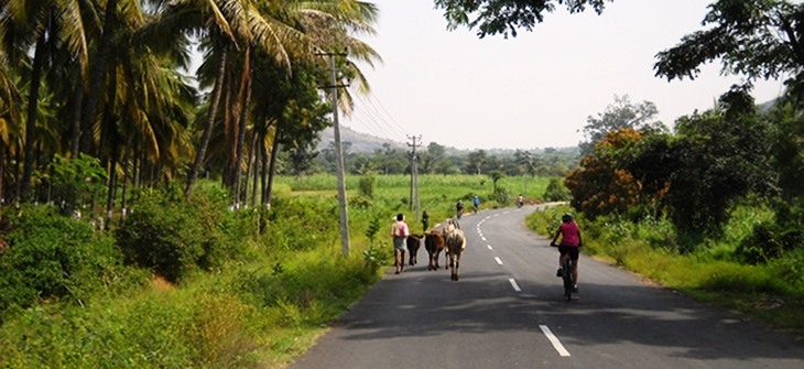 bicycle tours Goa