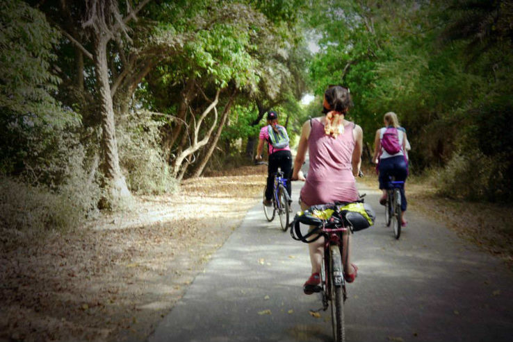 guided cycling tours in Rajasthan