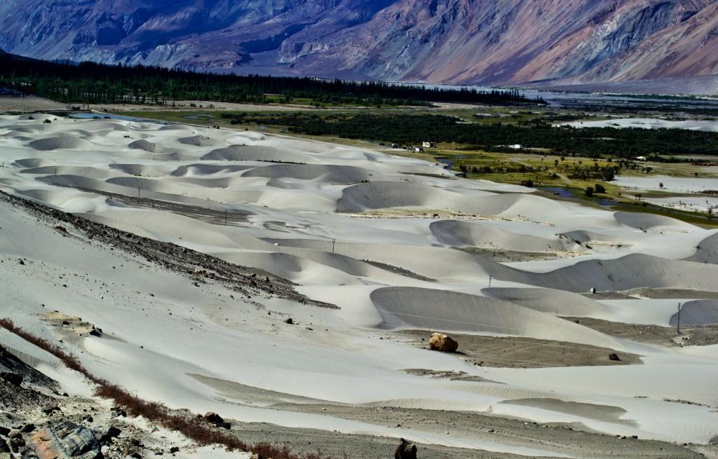 nubra Valley sand dunes