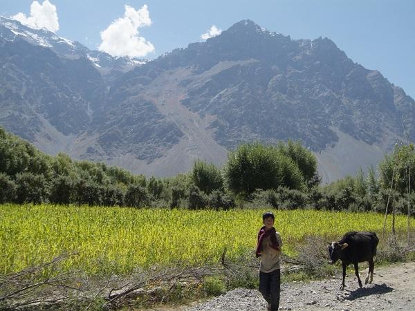 Suru Valley Ladakh