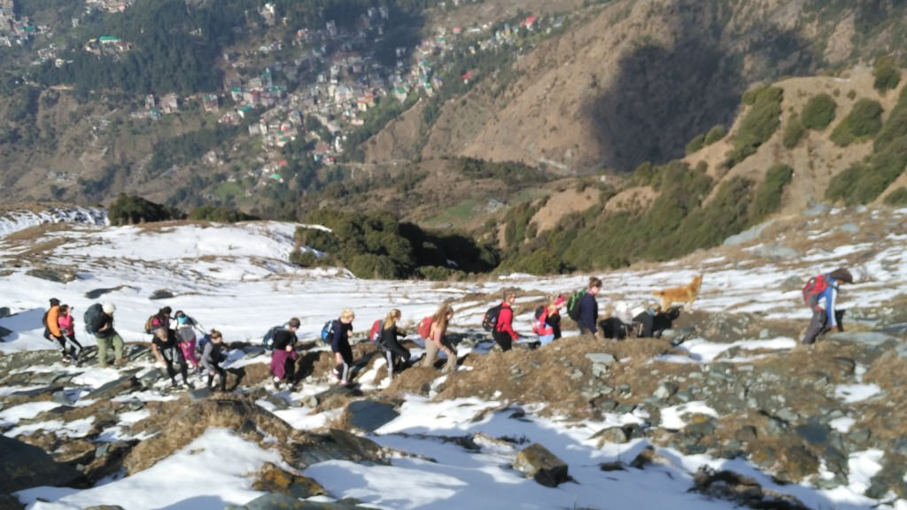 Triund Trek Dharamsala