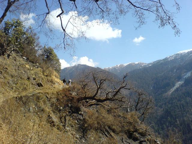 Towards Dodital trek