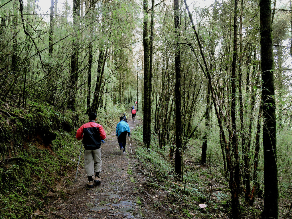 Hiking In Sikkim Explore Yourself Amidst The Alluring