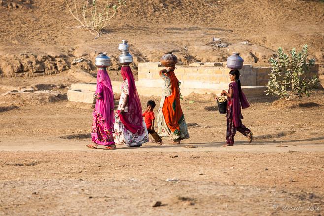 Life in Thar desrert, rajasthan