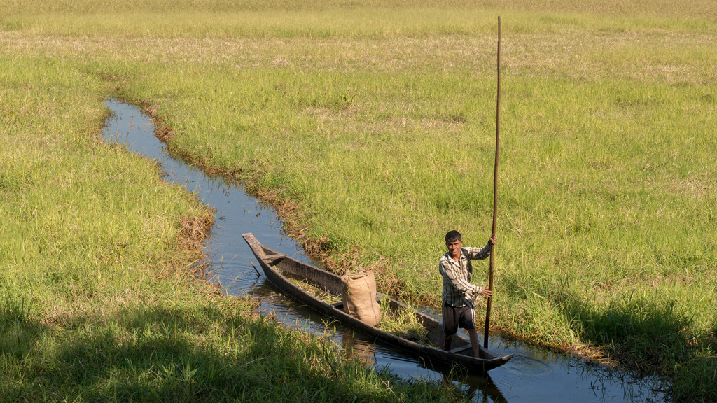 A lonely villager navigates his boat through the wetlands of Majuli Island
