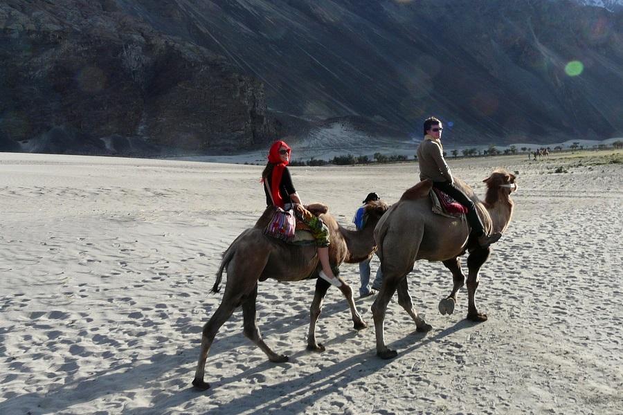Camel Safari in Nubra Valley (Extension - 1)