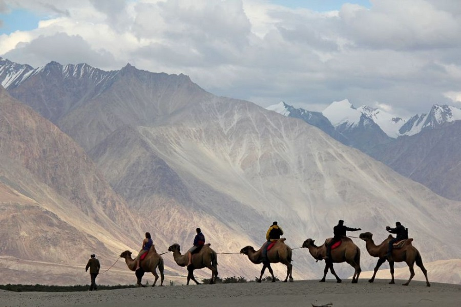 Camel Safari In Nubra Valley Extension 1