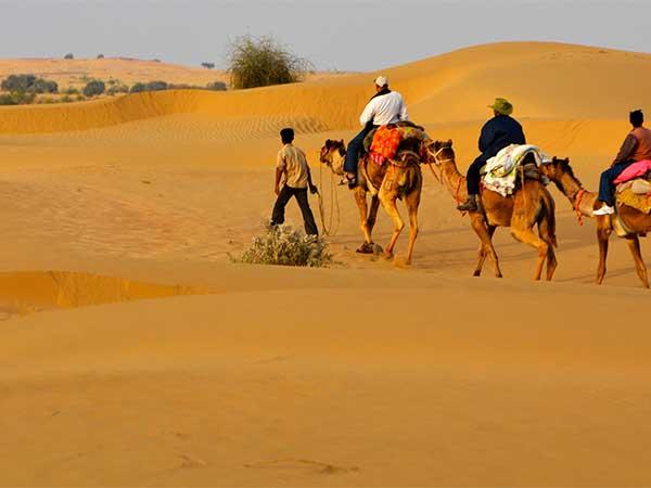 Rajasthan Tour Travel Planner